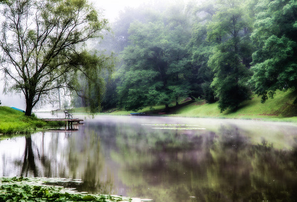 July 1 - Under the Willow Tree<br /> <br /> I saw the bench under the willow as I was driving by and decided to stop and take some pictures.  The fog had lifted some too.  <br /> <br /> Thanks for your comments yesterday on my dock image I posted.  This is the same lake.
