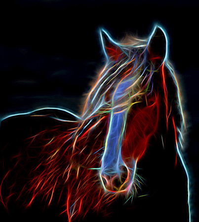 Jan 6 - Glow Horse<br /> <br /> Yes, this is/was a photograph.  I decided to experiment with some new post processing software, Topaz Glow.  I am sure some of you have seen it advertised and maybe some of you have even used it and posted some images processed with it (I haven't been active in the daily community for a few months).    This software can really change the original photography to the point that some may question why use it.  I am one who loves all forms of art, so I would not be in that category.  However, I can understand that point of view.  So is this a photograph, or isn't it?  I would call this an image created from a photograph.  I personally like this image, but I don't think I can call it a photograph (my opinion, for what it's worth).  There are some very cool effects that the software can produce and I may post more effects from this same photograph in the coming days.  Other opinions are welcome in the comments.  <br /> <br /> Thanks for your comments yesterday!