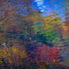 abstract waterscape, photograph made at Turkey Creek Nature Preserve