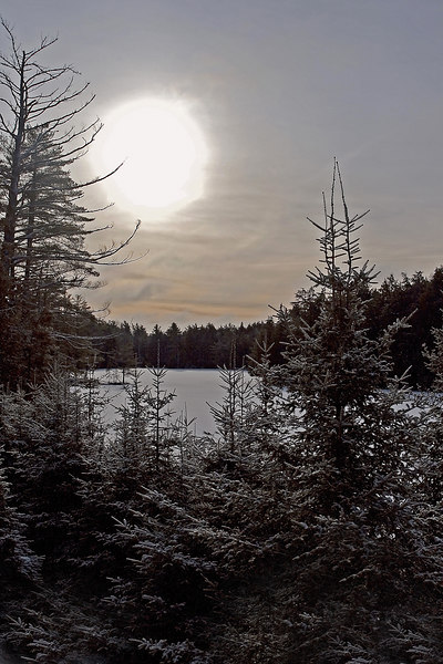 February 6th<br /> <br /> FROSTY WINTER MORNING IN ALGONQUIN<br /> <br /> Sunrise across a frozen lake in Canada.  The trees had a dusting of crisp snow from the drop in temps and flurries overnight.  <br /> The temperature on this morning was -5 F.  <br /> <br /> (I couldn't go out in the field today...too cold, so is a photo from my recent trip to Algonquin Park.)