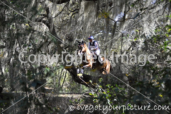Theme: Silver<br /> A cross country rider surrounded by the silvery Spanish moss in the oak trees at Rocking Horse Stables, Altoona, FL<br /> Rocking Horse Horse Trial, January, 2014