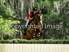 Theme: 2013 Favorites<br /> Red Hills International Horse Trials 2013