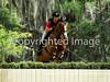 Theme: 2013 Favorites<br /> Red Hills International Horse Trials 2013