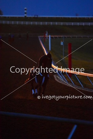 Theme:  RACE<br /> Very Early morning workout at Keeneland Racetrack<br /> EPN Meet-up, Lexington, KY<br /> April 2016