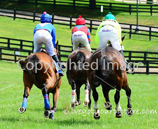 Theme:  Fences<br /> Racing away from the #Fences<br /> Highhope Steeplechase 2017, Lexington, KY