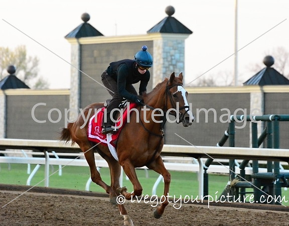 Theme:  Fast<br /> Early morning workout at Keeneland<br /> EPN Meet-up, Lexington, KY<br /> April 2016