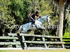 Theme:  2013 Favorites<br /> A favorite from last February at a Jimmy Wofford clinic in Ocala, FL.  The color isn't the best, but for some reason I like the way the white horse is soaring over this huge oxer.
