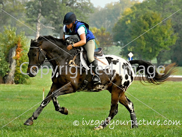 Theme:  Colorful Horses<br /> Jumpstart HT, 2012<br /> Kentucky Horse Park, Lexington, KY