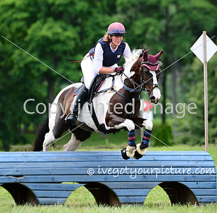 Theme:  Blue<br /> Lovely horse and rider going over a blue jump with a jeweled blue grab strap.<br /> 42FDL Flying Cross HT, 2015