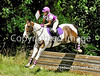 """THEME: Colorful Horses (and rider!)<br /> Stone Place MT, 2013<br /> More images from this event are available here: <a href=""""http://www.ivegotyourpicture.com/2013EquestrianEvents/42-FDL-at-Stone-Place-Farm"""">http://www.ivegotyourpicture.com/2013EquestrianEvents/42-FDL-at-Stone-Place-Farm</a>"""