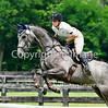 Theme:  Colorful Horses<br /> Antebellum Farm CT, August 2015