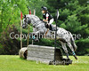 """Theme:  Colorful Horses<br /> Flying Cross MT,  May 2015<br /> More images from this event are available here:  <a href=""""http://www.ivegotyourpicture.com/2015EquestrianEvents/42FDL-Series-Flying-Cross-May"""">http://www.ivegotyourpicture.com/2015EquestrianEvents/42FDL-Series-Flying-Cross-May</a>"""
