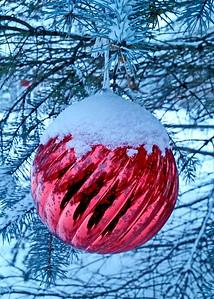 12/24   New Snow for Christmas