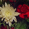 12/11   Christmas Floral Arrangement