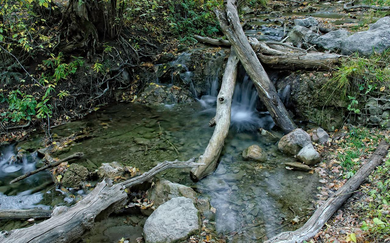 11-17-10<br /> <br /> A Stream Runs Through It
