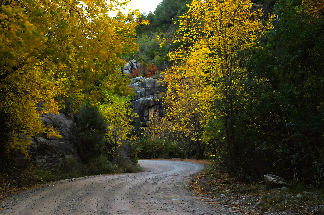 "11-15-10<br /> <br /> Morning Drive <br /> <br /> NM Rd 165 through the mountains east of Albuquerque, near the Sandiaman Cave. <br /> <br /> Edit: #1: It was actually a little breezy down in this canyon as evidenced by the leaves on the upper left being blurry, but still a nice crisp area. <br /> <br /> Edit #2: Posted at 1:08am MST. 2:00 mins later the image was gone and I passed out thinking about it. The image was no where to be found on the third refresh of smug for adding the first 50 this morning. I woke up at 9am this morning to page 7 or so. Something weird going on but definitely related to Smug not an individual. Just FYI.  <br /> <br /> Past Dailies: <a href=""http://tdm.smugmug.com/Daily-Images/Daily-Images/9998215_UbiPP#1088106404_BdTFU"">http://tdm.smugmug.com/Daily-Images/Daily-Images/9998215_UbiPP#1088106404_BdTFU</a>"