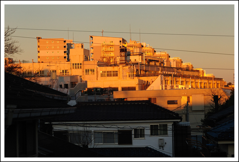January 24.  Seishi needed to be up bright and early (no problem with jet lag), so I was up early too.  The sunrise turned these white buildings a pretty pink.  This is a view from our living room window.