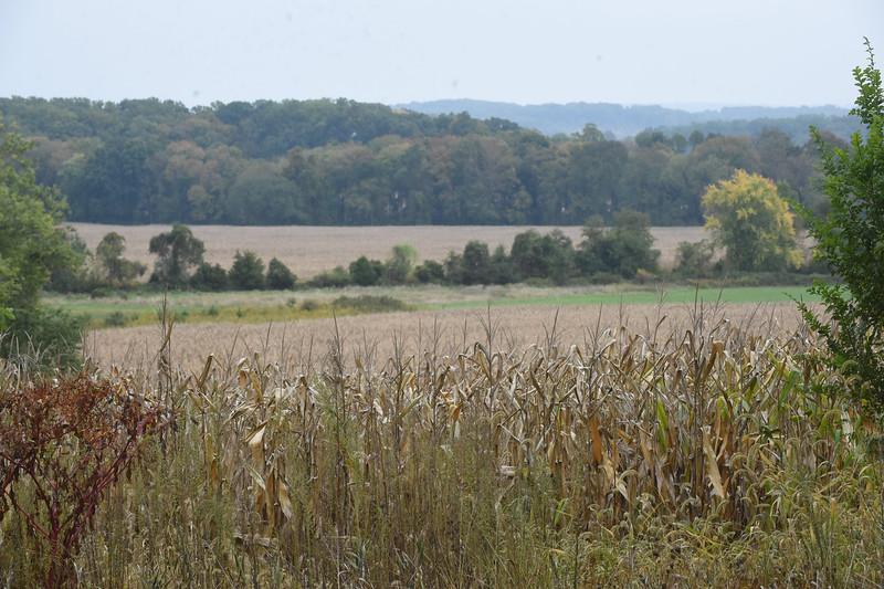 PETE BANNAN-DIGITAL FIRST MEDIA   Bryn Coed a1500 acre farm in West Vincent.