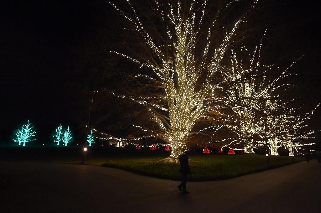 . PETE  BANNAN-DIGITAL FIRST MEDIA     Lights at Longwood Gardens.