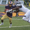 PETE BANNAN  DIGITAL FIRST MEDIA    <br /> West Chester University running back (23) Jarel Elder jtries to avoid Bentley  linebacker Brnadon Brow in the second quarter of  the Golden Rams 51-9 victory over Bentley Thursday evening at Farrell stadium.