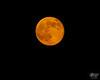 "June 23, 2013  The obligatory ""super Moon"" shot."