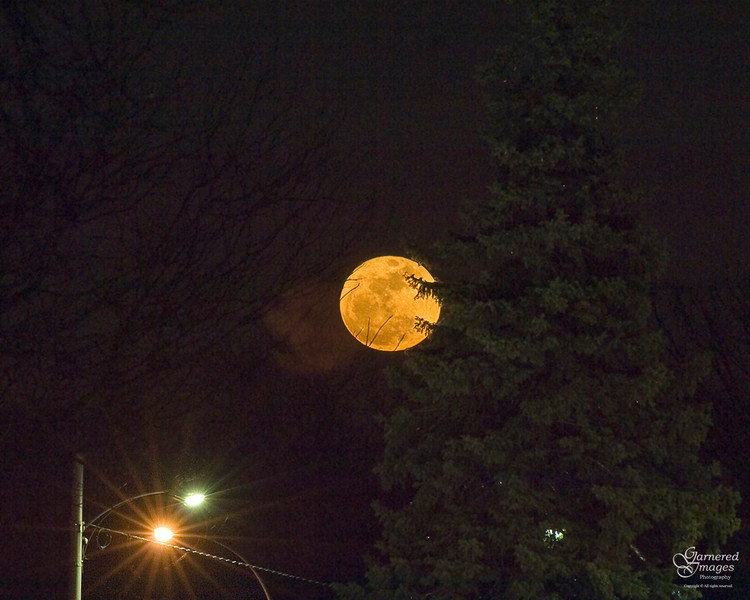 March 19, 2011:  The biggest full moon of our lifetime on the rise (composite of two exposures; one for moon, one for foreground).