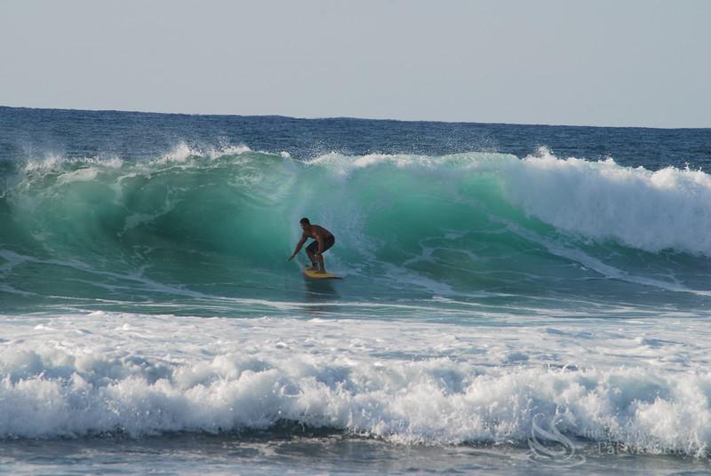 Surfer Picture