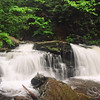 Ricketts Glenn Waterfall Picture