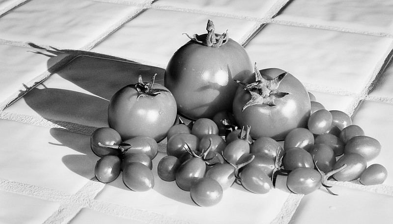 August 6 - Is a tomato still a tomato if it's not red? I liked the shadows.