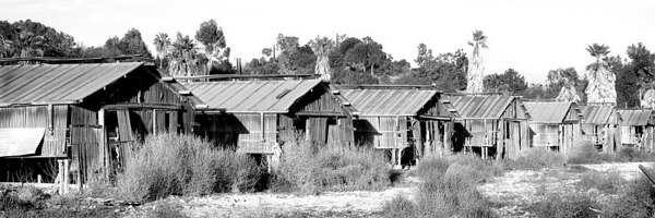 """March 8- Derelict Poultry Farm Wide Angle. I cropped off the top and bottom and made it a 1:3 ratio. There was a deep shadow in the foreground because the sun was behind the hill. I deliberately took the shot without the zoom so I could get the width. I forgot to mention that I was limited in where I could stand because I'm poking my lens through a fence and it has barbed wire on top. I wish I could get closer.<br /> Edit: I finally used the web format bar Information button and got """"page information"""" and came up with the link for the previous post. I changed it. It works. Whew, why doesn't it work the way it did before?"""