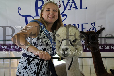 Jillian Ranko, 17, of Butler stands with three-year-old Alpaca, Aspen, at the Big Butler Fair on July 7, 2018.