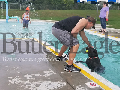 Tom Sellers of Center Township greets his Remi, a English chocolate labrador mix, at the edge of the pool.