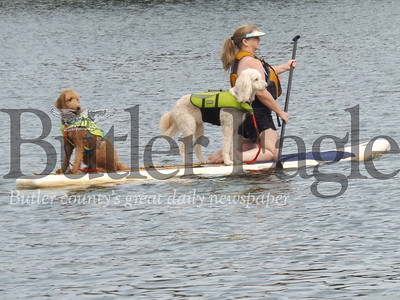 These two pups and their paddling owner were among the sights seen Saturday, Sept. 16, from the Nautical Nature boat tour, which is run by the Moraine Preservation Fund at Moraine State Park. Boat tours will continued through Oct. 27, 2018. Donna Sybert/ Butler Eagle