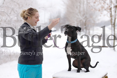 Butler County Humane Society kennel assistant Maddy Chechak of Portersville plays in the snow with a year-old lab-pitbull mix named Marissa Wednesday behind the animal shelter. Seb Foltz/Butler Eagle