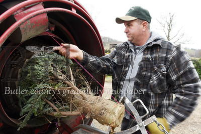 Harold Aughton/Butler Eagle: Kevin Dambach of Lake Forrest Gardens wraps a Christmas tree for a customer.