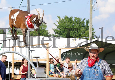 Les Kimes of Cousin Grumpy's Pork Chop Revue guides one of his goat's, Ethel across an obstacle as part of opening day festivities at the 2019 Butler Farm Show. Kimes's show includes singing and stunt performing pigs along with a pair of goats and a llama. 08/05/19 Seb Foltz/Butler Eagle