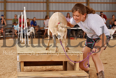Kendyl Steighner tries to coax her goat Moanna down the stairs during Wednesday's goat obstacle course race at the 2019 Butler Farm Show. 08/07/19 Seb Foltz/Butler Eagle