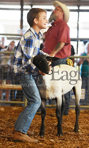 Harold Aughton/Butler Eagle: Hank Geibel wrestles to display his lamb during the 4-H-FFA Livestock Auction Thursday eventing at the Butler Farm Show.