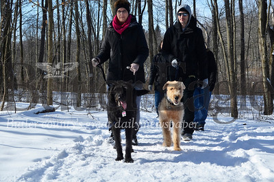 Carol and Michael Caparoula walk Lucy and Lorelai through Moraine State Park on Groundhog Day.  Tanner Cole/Butler Eagle