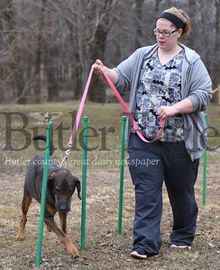 Butler County Humane Society employee Rebecca Morrow takes Cash A Hound Mix through the new Agility trail at the Butler County Humane Society office