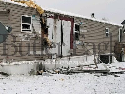 Three dogs were killed in a fire in a Saxonburg trailer on Tuesday night.