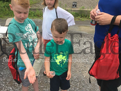 3 Column Photo. Andy Johnson, 7, (left) displays a cicada wing during the Fike bug walk at the Butler-Freeport Community Trail. The event was held in memory of Mark Fike, an 11-year-old who was killed in a January accident and loved insects. Photo by Nathan Duke.
