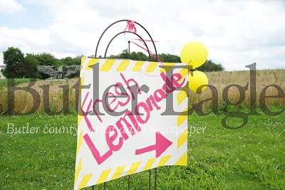 Gianna Shwallon lemonade stand story Seb Foltz/Butler Eagle
