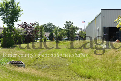 Harold Aughton/Butler Eagle: Karen Kennedy of Saxonburg Village believes the lack of maintenance on the landscaping at the Dollar General in Saxonburg is devaluing her property.