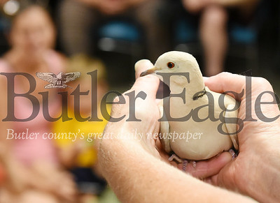 Harold Aughton/Butler Eagle: Animal ambassador, Suzy, a collared dove, visited the children in the reading program at the Butler Library, Wednesday, June 26.