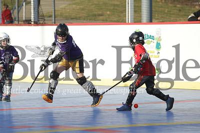 Butler County Dek Hockey Association