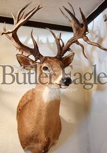 Harold Aughton/Butler Eagle: Rocco raises wall hangers on his whitetail deer farm near Boyers