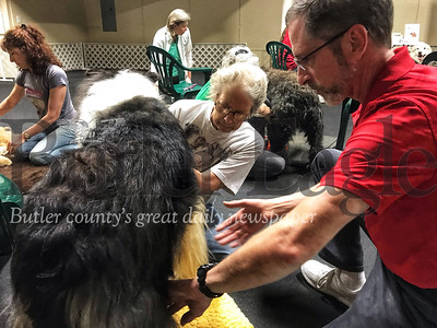 Dr. Doug Knueven helps Nikki Rock find an acupressure point on her dog James, a 4-year-old rough collie.