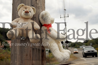 A pair of stuffed bears hang from nails on a telephone pole across from the Saint Vincent De Paul warehouse in East Butler. Passers by have noticed that East Butler Road has been populated by a number of continually alternating plush toys. Workers from Saint Vincent DePaul suspect the animals are coming from the warehouse dumpster. Seb Foltz/Butler