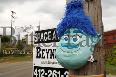 A stuffed troll head hangs from nails on a telephone pole across from the Saint Vincent De Paul warehouse in East Butler. Passers by have noticed that East Butler Road has been populated by a number of continually alternating plush toys. Workers from Saint Vincent DePaul suspect the animals are coming from the warehouse dumpster. Seb Foltz/Butler